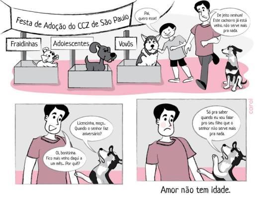 carol_adocao_ccz