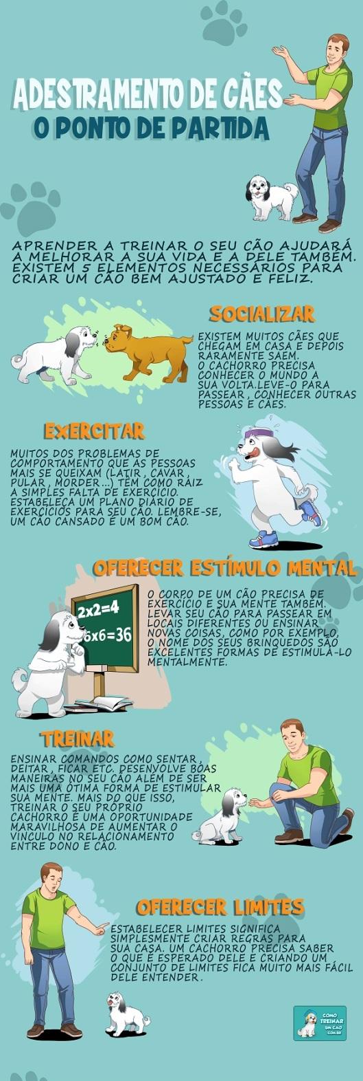 Adestramento de Cães - infografo 600px